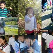 apple picking1_2014
