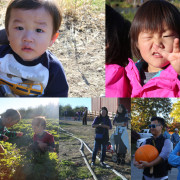 apple picking2_2014